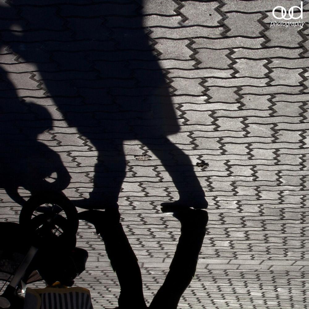 Whistler Shadows 14