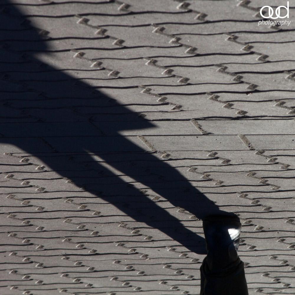 Whistler Shadows 16