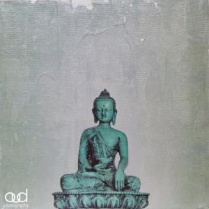 Buddha 8x8