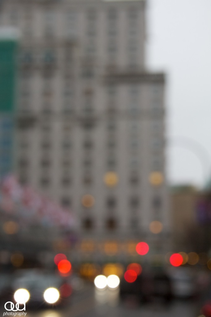 DT Out of focus Series 12